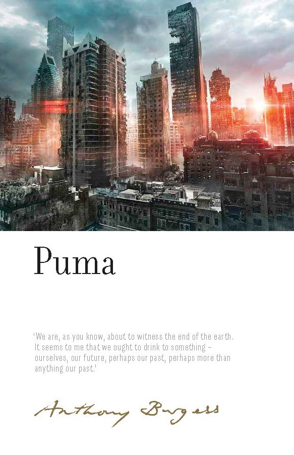 Image result for puma irwell edition anthony burgess