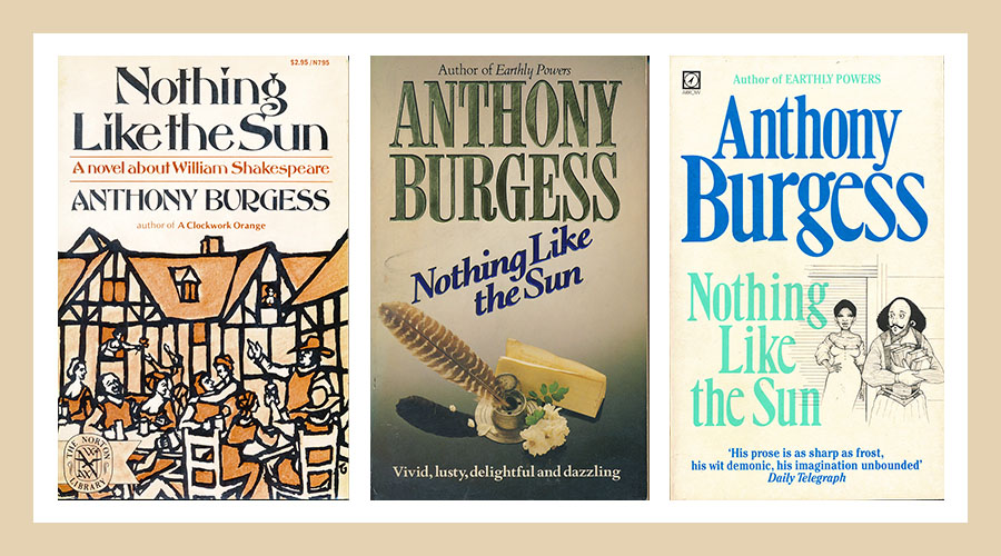 Nothing Like The Sun book covers