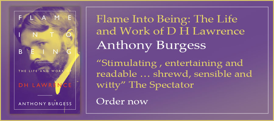 """Flame Into Being: The Lifeand Work of D H Lawrence Anthony Burgess """"Stimulating , entertaining and readable … shrewd, sensible and witty"""" The Spectator Order now"""