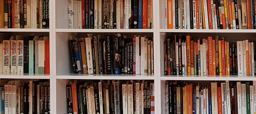 Books on Reading Room shelves